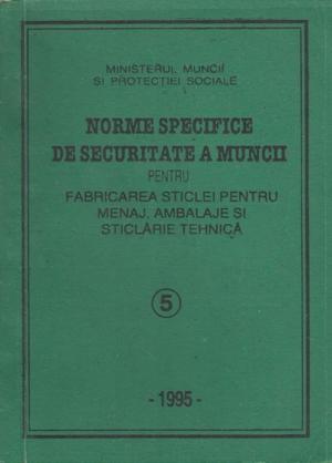 NSSM 5 PROTECTIA MUNCII
